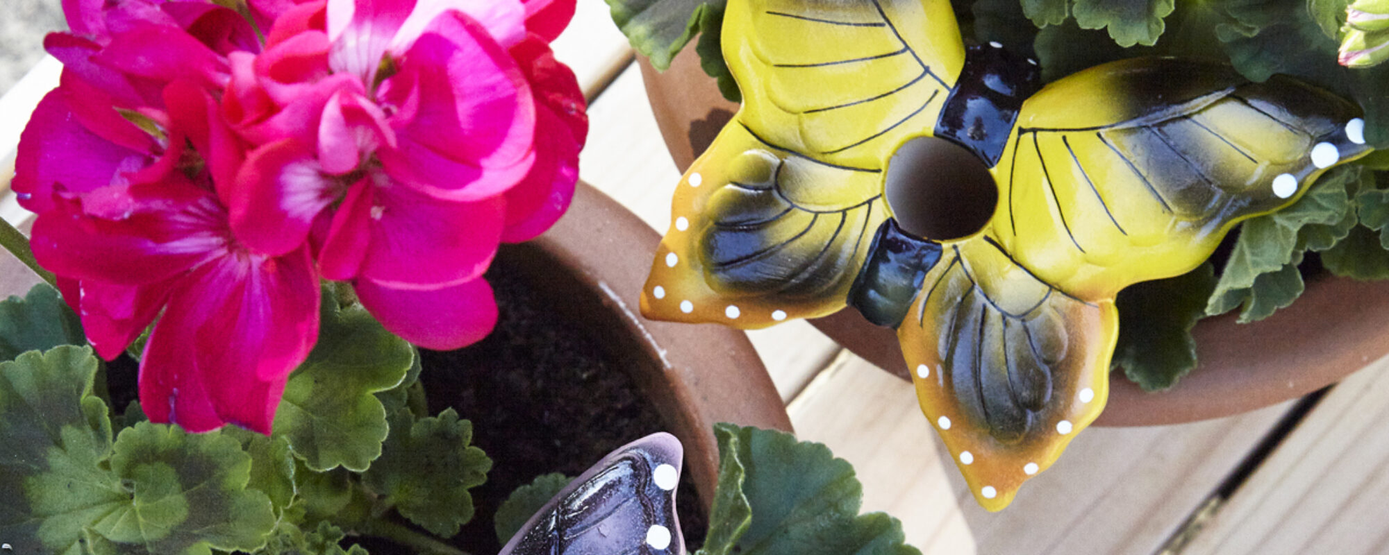 How to create your garden oasis